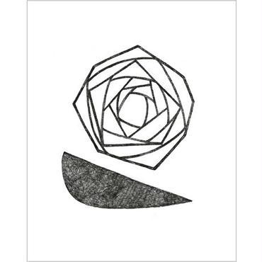 「単調な花 #02」阿部寛文, Ed.2, まちなかアート・エディションズ