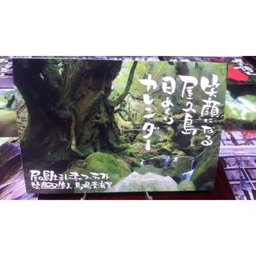 屋久島日めくりカレンダー