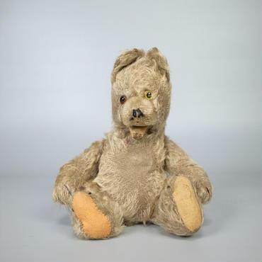 30s40s german teddy bear odd eyed