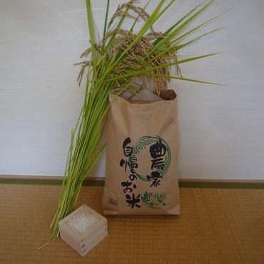 五分づき米@微生物・減農薬農法/コシヒカリ5kg