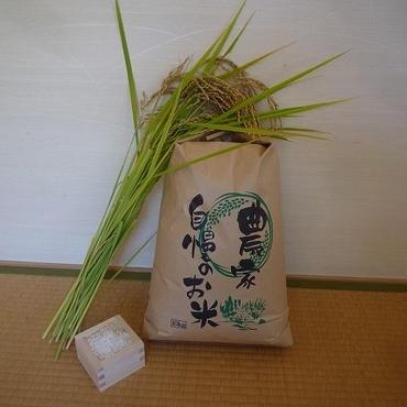 五分づき米@微生物・減農薬農法/コシヒカリ10kg