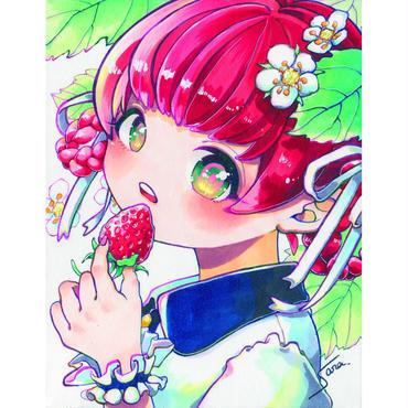 横田紗礼オリジナルポストカード5枚セット。
