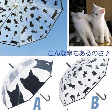 雨の中♪黒猫が元気に飛び跳ねるよ♪猫柄(=^▽^=)ビニール傘☆問屋直送品です。