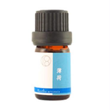 薄荷 ハッカ(HAKKA /Japanese mint)