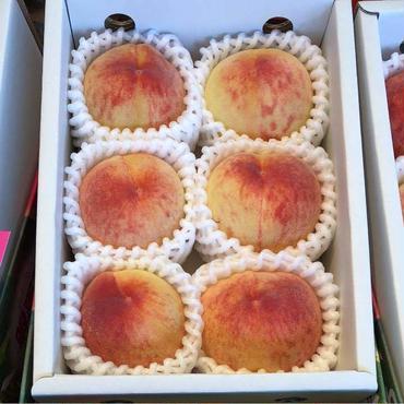 山梨産 温室桃