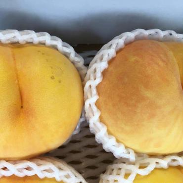 黄金桃 2玉
