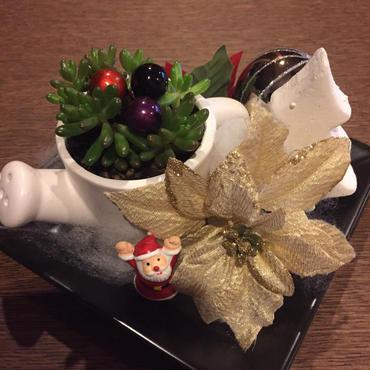 多肉とサンタのクリスマス♡