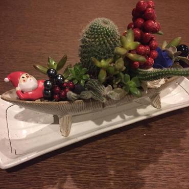サボテンと多肉の寄せ植え☆クリスマスバージョン♡