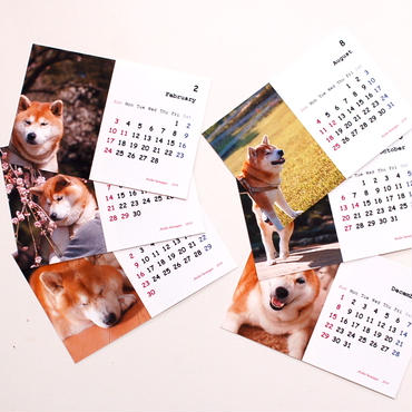 カレンダー2019(柴犬)