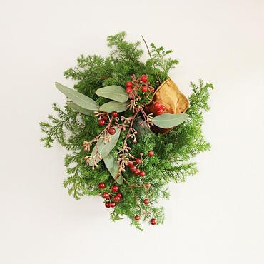 【先行予約】christmas wreath ( M-size)