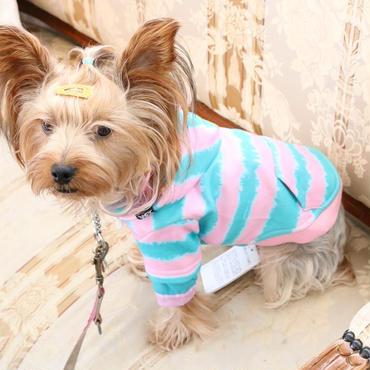 X-girl(エックスガール)タイダイレイヤードフーディー 小型犬 送料無料