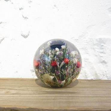 Hafod Grange / ハフォド・グレンジ / Paper weight / Mixed Flora