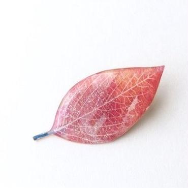 木の葉のブローチ(ラメ入りB / ボックス入り)