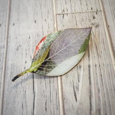 木の葉のブローチ(B)