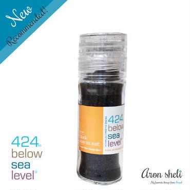 424 Below Sea Level Salt【ブラックコースソルト】