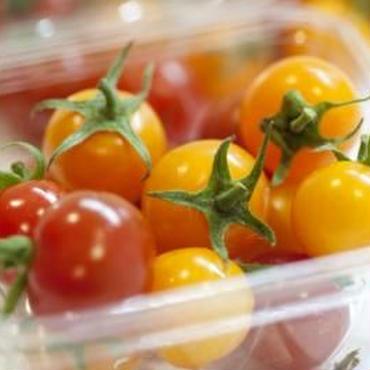 栄養こだわり野菜「にこトマト:ミニトマトMIX(赤/黄)150gパック」