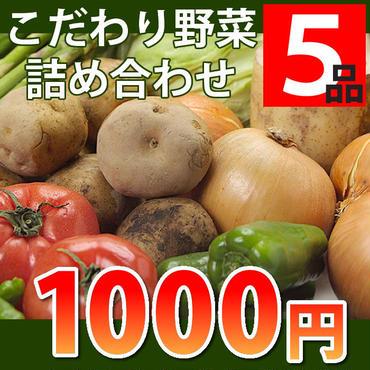 【お試し】【期間限定】お試し旬のこだわり野菜セット5品詰め合わせ