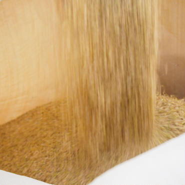 【28年度産新米販売開始】山形県産「つや姫:業務用 玄米30kg」特別栽培