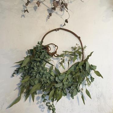フレッシュユーカリの枝みせリース