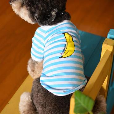 バナナプリント半袖ボーダーTシャツ (水色)