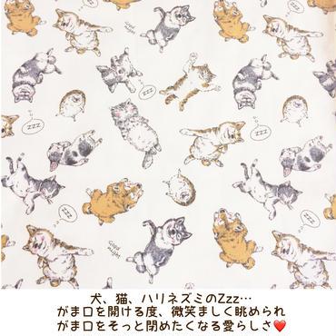 犬・猫・ハリネズミ好きさんに捧ぐ💕内布