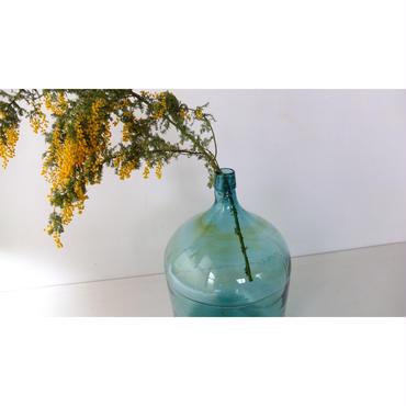 Demijohn Bottle(Japan)