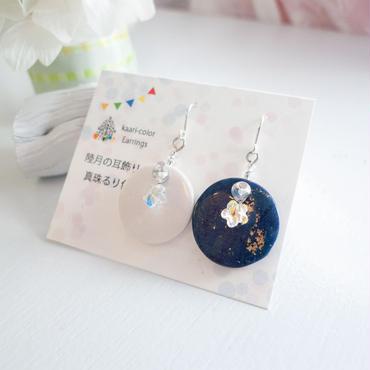 【 耳飾り 】隣り合わせの真珠るり色 sv925ピアス no.699EP