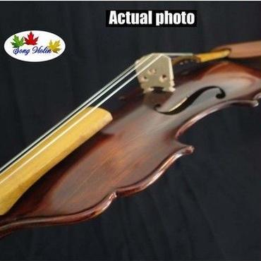 バロックバイオリン noリブバイオリン ユニークなバロックスタイル ケース付 楽器 演奏