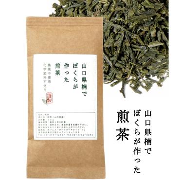 ぼくらが作った煎茶 70g 【農薬・化学肥料不使用】