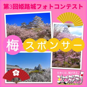「第3回姫路城フォトコンテスト」個人スポンサー用チケット(梅)