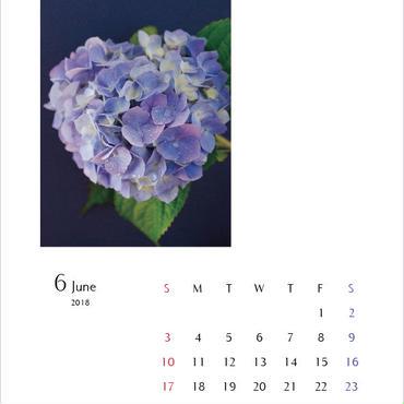 カレンダー2018・A4サイズ/calender A4size