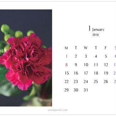 カレンダー2018・ハガキサイズ/calender postcard size