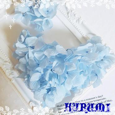 小分け ホワイトゆめアジサイ ブルー 【4g 】