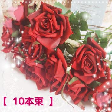 【MAGIQ ~東京堂】スターローズ レッド(10本)