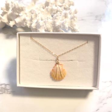 《14kgf》sunriseshell necklace
