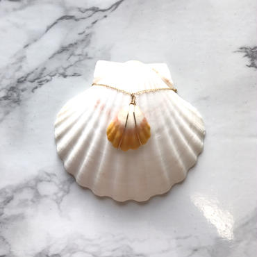 《14kgf》sunrise shell necklace -C-