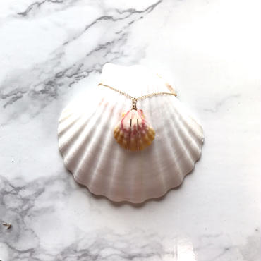 《14kgf》sunrise shell necklace -D-