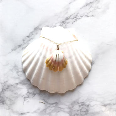 《14kgf》sunrise  shell  necklace -A-