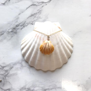 《14kgf》sunrise shell necklace -B-