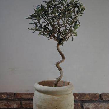 Import Olive テラコッタ壺 no.170422-3