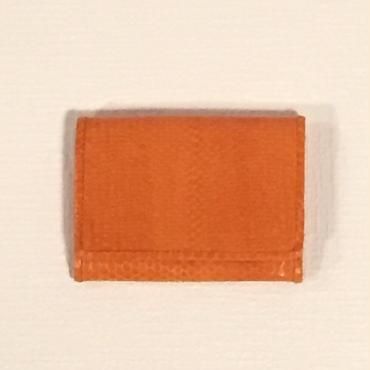 TANGO 海ヘビ カードケース・オレンジ