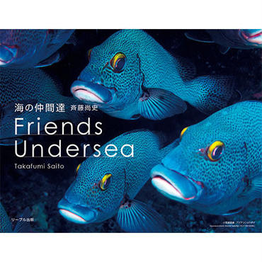 海の仲間達 Friends Undersea