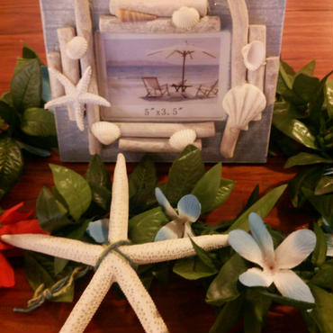 SHELL PHOTOFRAME