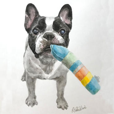 ペットの肖像画 pet portrait