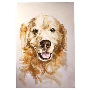 ペットの肖像画 pet portrait/ゴールデンレトリバー
