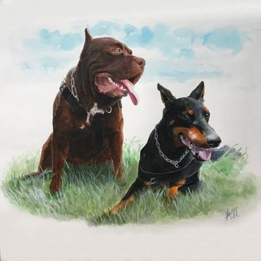 ペットの肖像画 pet portrait/ピットブル&ドーベルマン(A3)