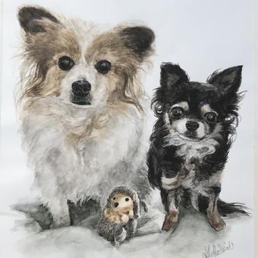 ペットの肖像画(A4サイズ・2匹) pet portrait