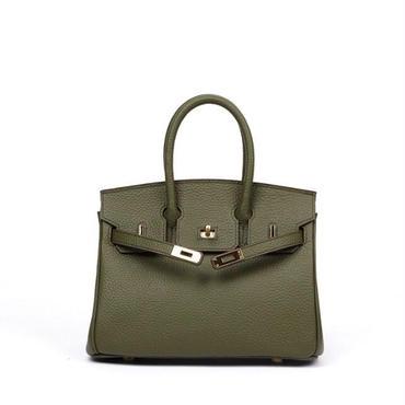 Birkin type bag  mini