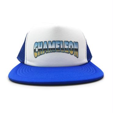 """OLD SCHOOL"" MESH CAP (BLUE)"