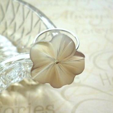 プルメリアのリング - white silver